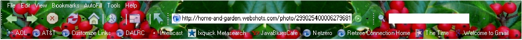 Christmas Holly Screenshot.jpg